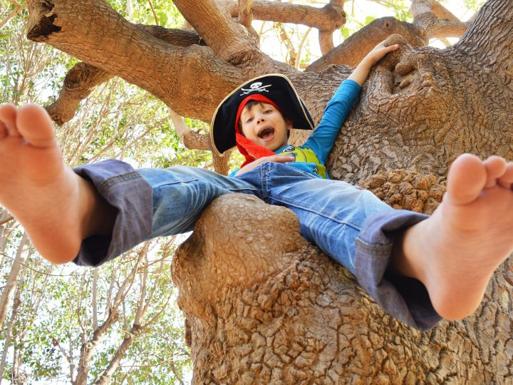 Great summer family things to do in the UK